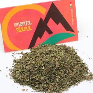 sito_menta